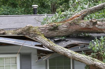 Husforsikring dækker skader på huset