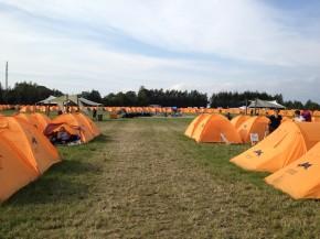 Festival tyveri og forsikring