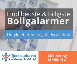 300x250AlarmPanel_dansk